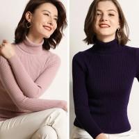 Bundle of 2 Light Pink & Purple HighNeck For Women
